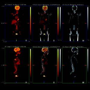 fusion x – default